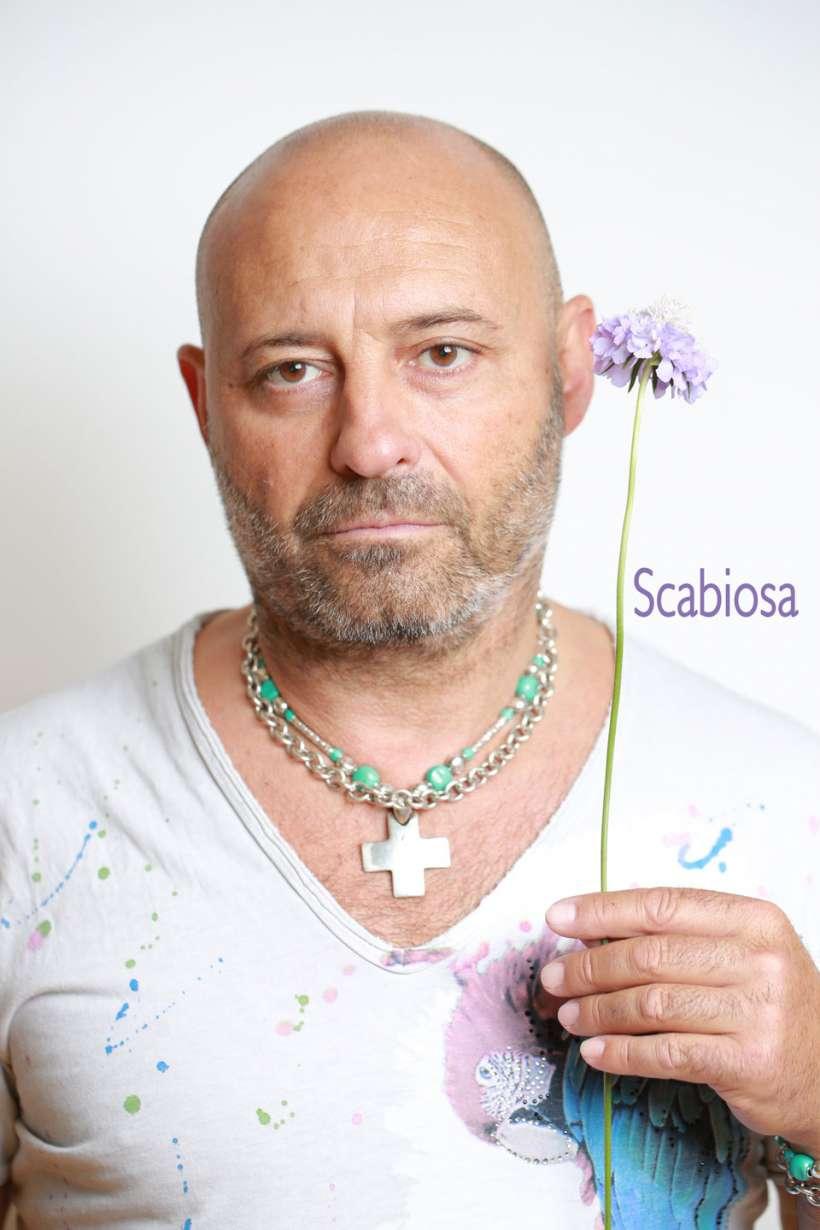 scabiosa-2.jpg